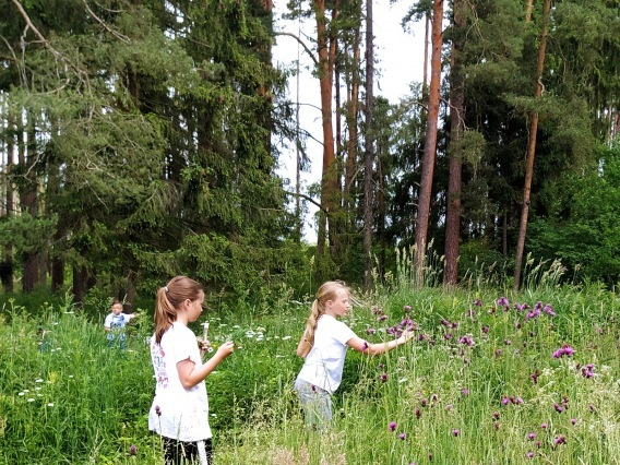 TÁBOR & Tajomstvá lesa pre najmenších