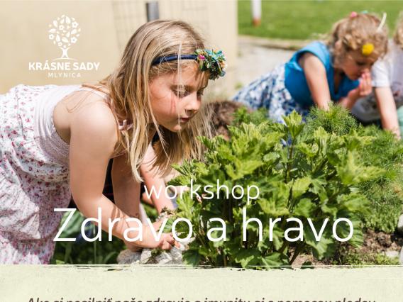 Workshop & Zdravo a hravo