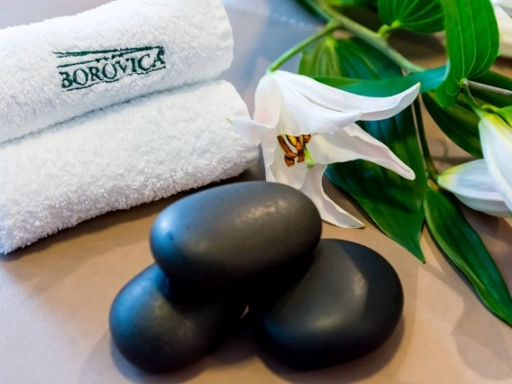 Wellness Hotel Borovica